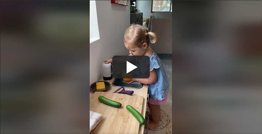 toddlers-and-wealth-stewardship-video-card
